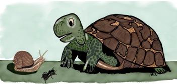 La Tartaruga e la Lumaca