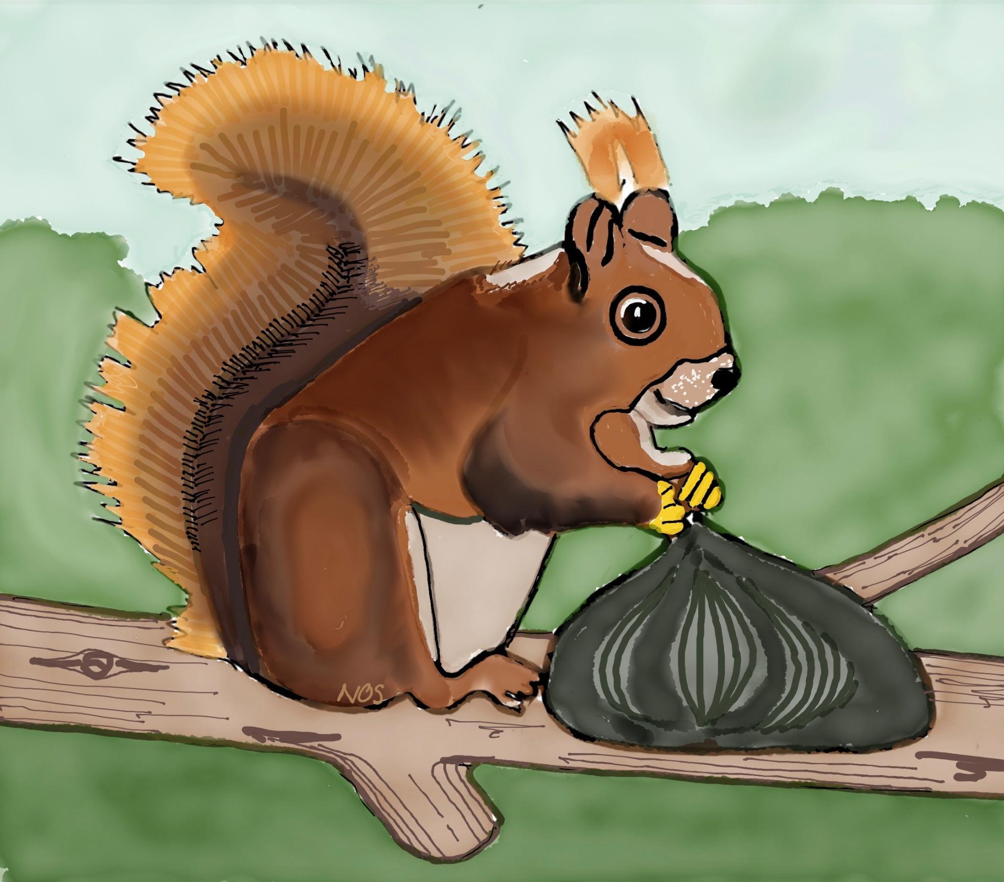 Lo scoiattolo Ciop