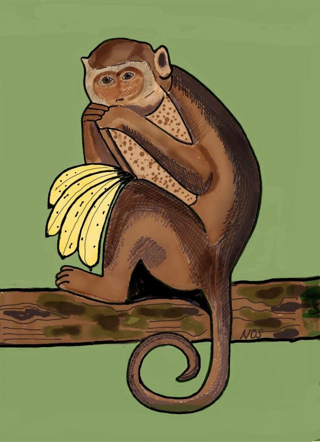 La Scimmietta Cita